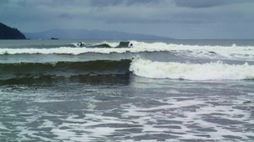 The things we do for a few moments of bliss. Surfers off the beach at Pacheedaht