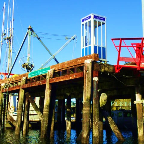 """At the corner of telephone and telephone. """"Degnen Bay Harbour Authority"""" says the green sign. Phone boxes and hand cranes will all soon be gone forever."""