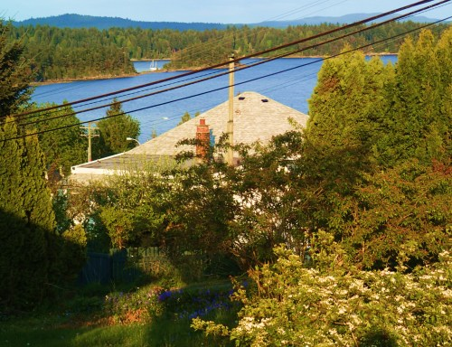 More wires! Ladysmith Harbour, aka Oyster Bay, beyond.