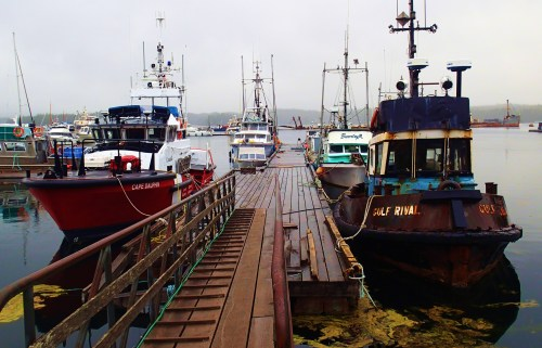 """The rather good, the not so bad, and the very ugly. Shearwater """"Hobo"""" dock."""