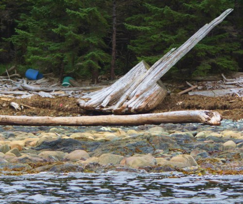 Things that go bump in the night. From a distance it first appeared to be a shipwreck. The blue barrels are part of the massive amount of plastic flotsam found everywhere along the open coast.