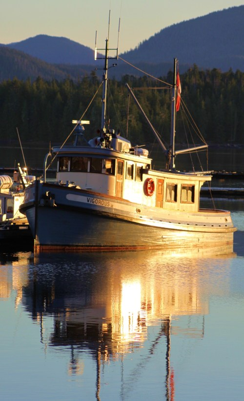 Vigorous II in dawn's early light. An old wooden tug converted to a yacht. What lines! Sunshine, as you can see, becomes a most treasured commodity now that summer is past.