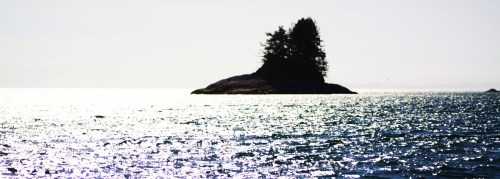 A very small island. One of thousands of islets along the coast. This one is where Wells Passage opens out onto Queen Charlotte Strait.