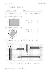 thumbnail of nagasa3