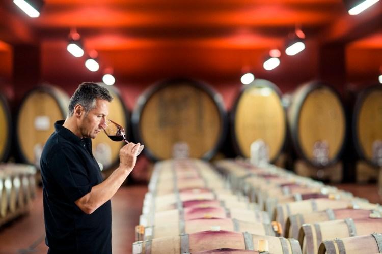vini rossi dell'alto adige