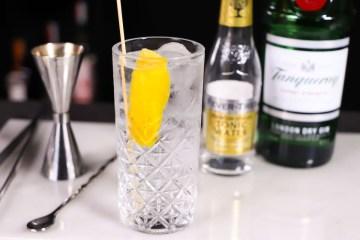 Gin tonic_ricetta