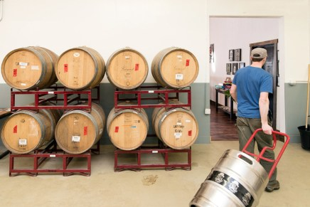 Kevin Drake, owner of Alibi Ale Works in Incline Village, Calif., pulls the first keg of pale ale passed a rack of barrels meant to barrel age and sour beers for the future. Photo by Mike Higdon