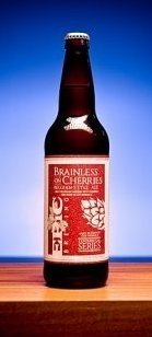 Epic Brewing Brainless on Cherries