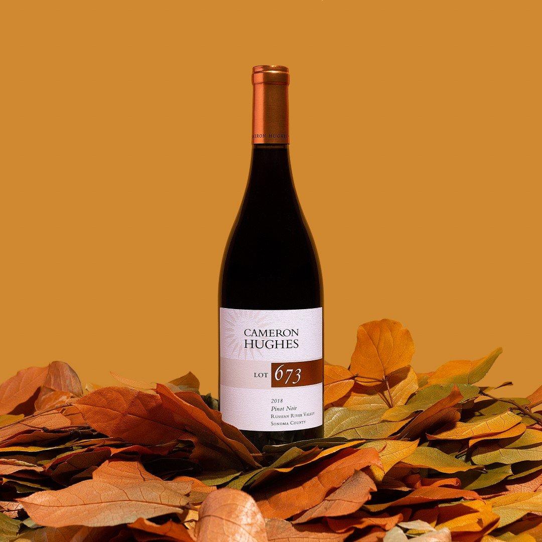2018 Cameron Hughes Lot 673 Pinot Noir Russian River Valley