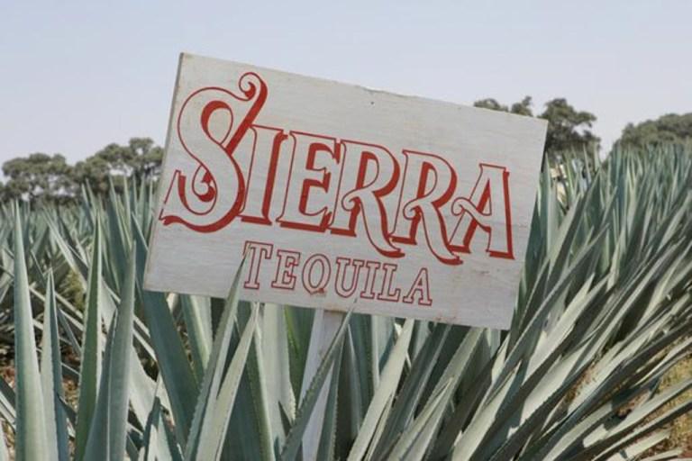 Текила Sierra