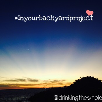 In Your Backyard Project