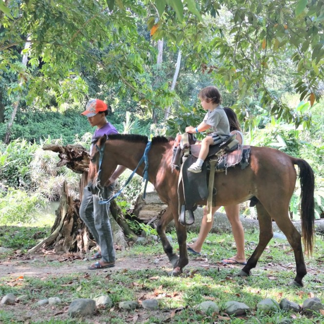 Horseback-riding-in-Jarabacoa