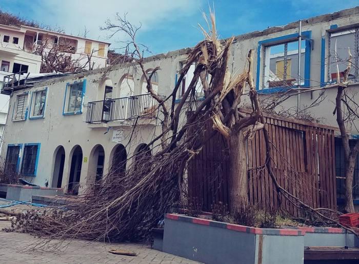 destruction of Hurricane Irma
