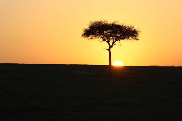 Daydreams of Living Abroad Kenya