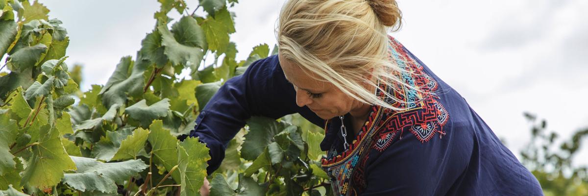 Future Leaders of Australian wine