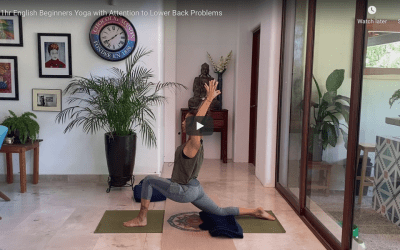 1hr Beginner Yoga (Bilingual)