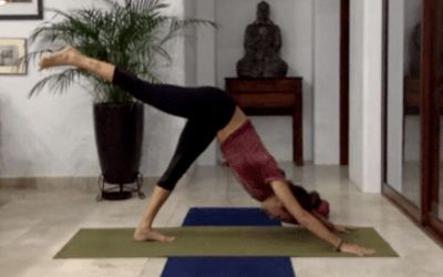 1hr Yoga for Beginners Class Focusing on Back Extensions (Bilingual)