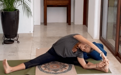 1hr Yin Yoga All Levels / Intermediate (English)