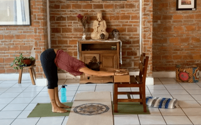 30min Beginner Yoga For Seniors with Chair (English)