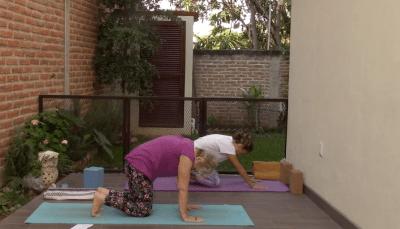 55min Therapeutic Yoga