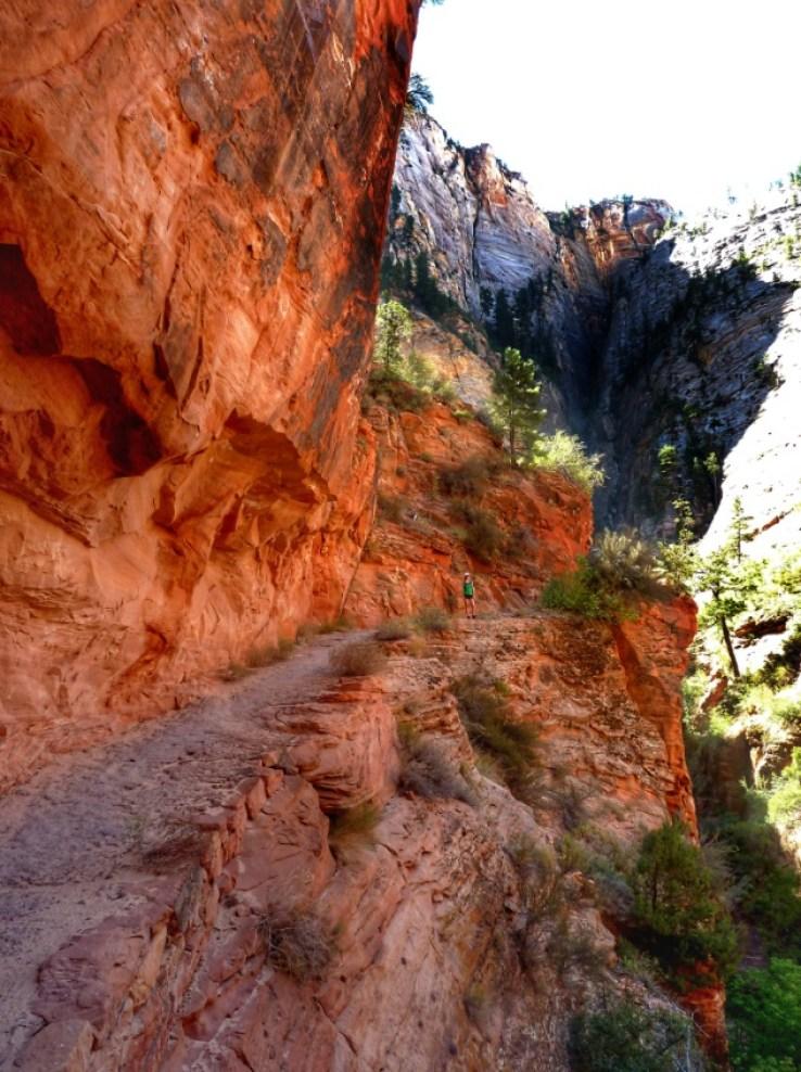 trekking narrows zion park