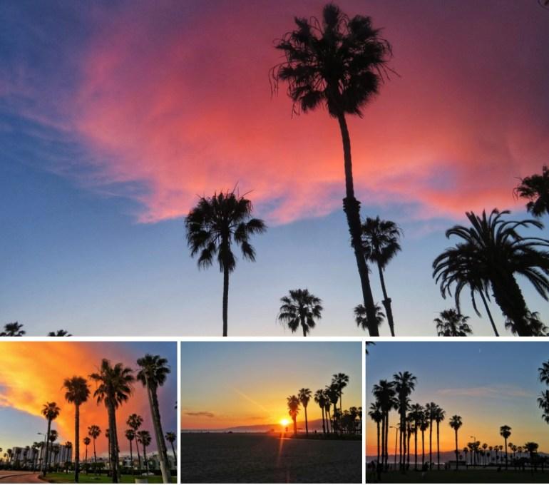 cosa fare a Venice beach