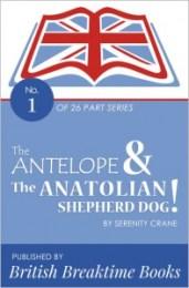 The Antelope & The Anatolian Shepherd Dog