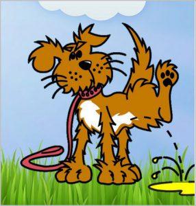 Wee Patch Restore Dog
