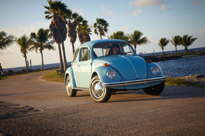 Miami Travel Guide Beetle