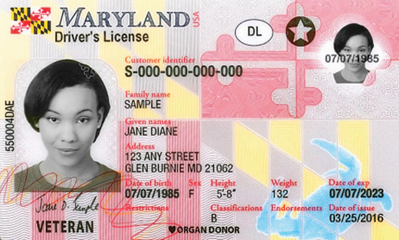 Maryland Driver S License Application