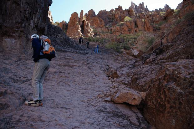 Fellow hikers