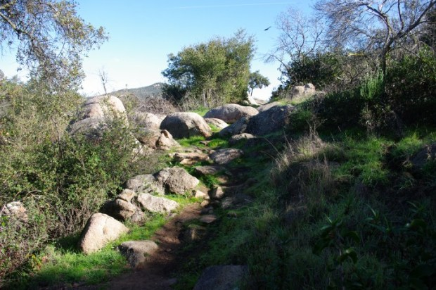 A trail at Dos Picos County Park.