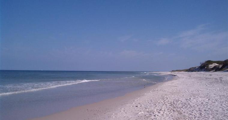 I'm a Gulf-Shore Convert