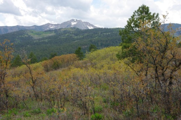 Drive North of Durango on Co. Rd. 204 for incredible views of the city and surrounding mountains.