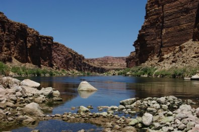 The Colorado River from the mouth of the wash.