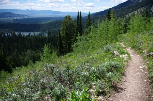 Incredible views from the Lupine Meadows trail.