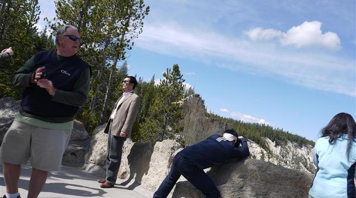 Yellowstone Wildlife, Human Edition