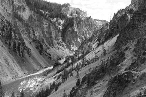 Grand Canyon of the Yellowstone ... black and white instead of yellow.