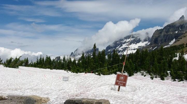 Snowed under in Glacier National Park