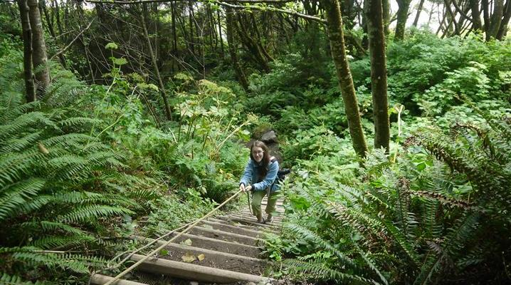 Olympic NP's Trail of Terror