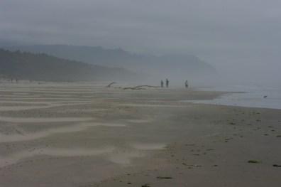 Foggy coast.