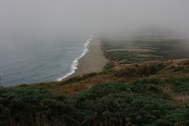 Our last view of the Pacific (for this trip) from the Point Reyes Seashore.