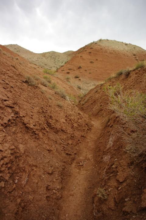 Our last walk through mud piles.