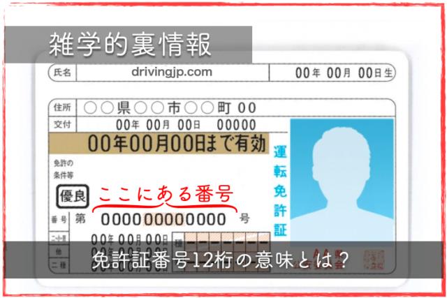 免許証番号12桁の意味ってご存知ですか!?