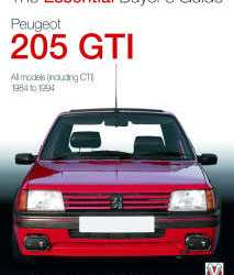 Peugeot 205 GTI Buyer's Guide