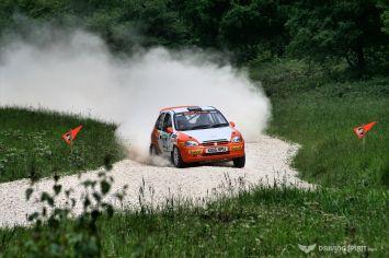 dukeries-rally-2013-39