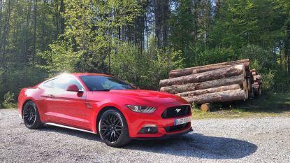 Ford Mustang V8 Fastback 2015 03