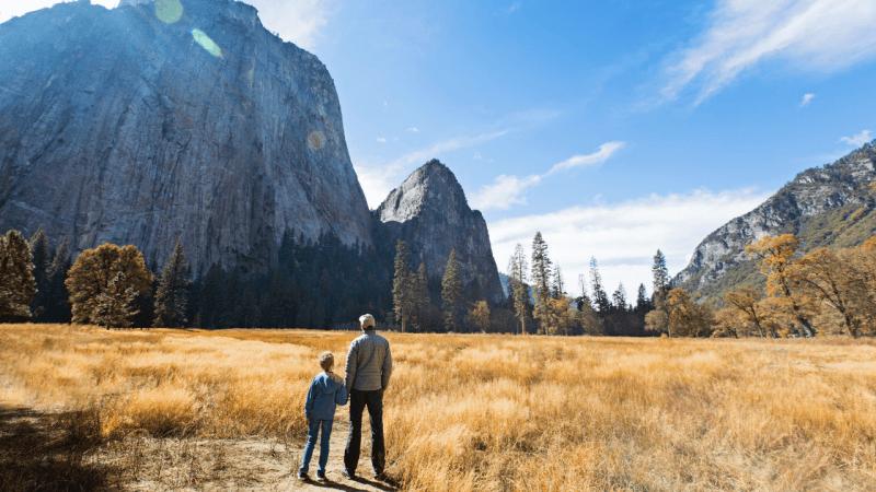 Yosemite Tourism.png