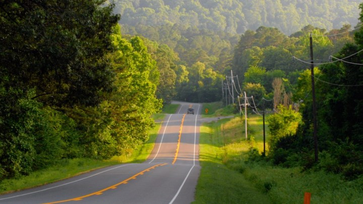 The Ouachita National Forest Road Trip Guide
