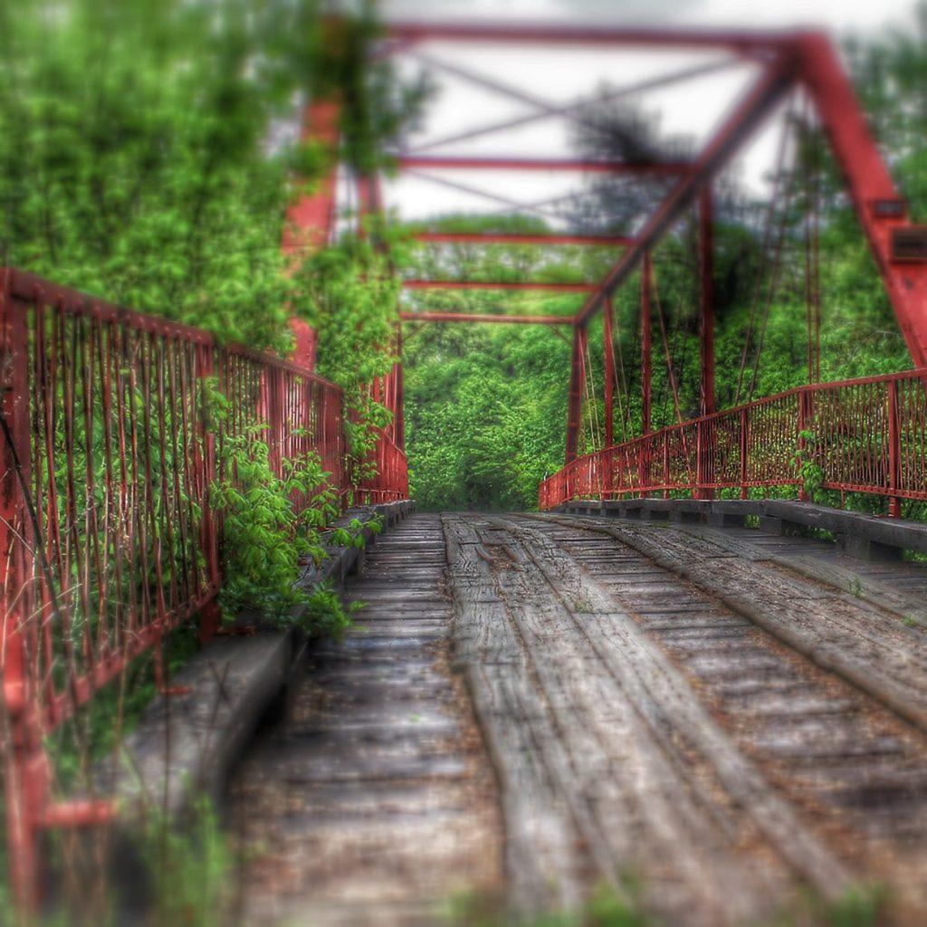 The Goatman's Bridge.